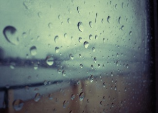 Rainy Morning #4
