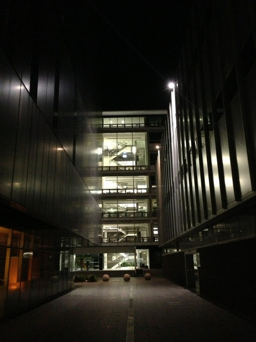 Midnight on Campus